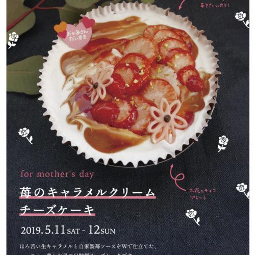 母の日ケーキ ご予約受付中!