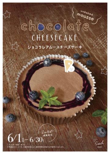 ショコラレアムースチーズケーキ