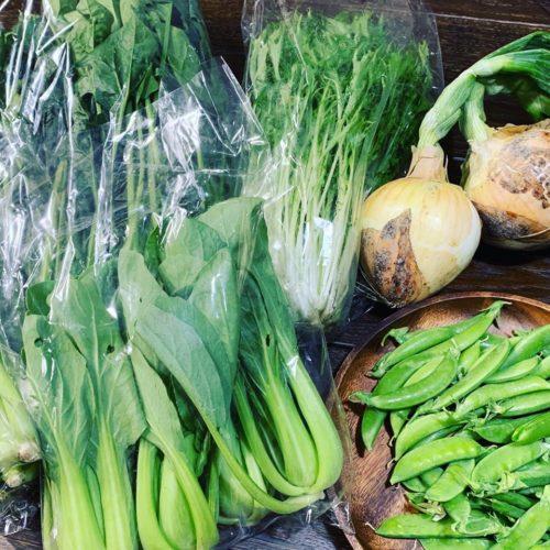 organic野菜 ネゴランドさん
